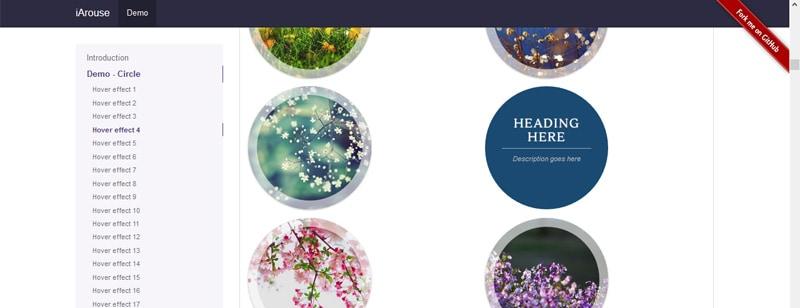 Website hover effects - Turek Web Design - Website design with SEO focus